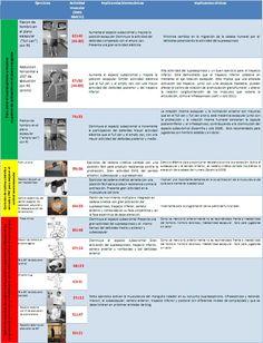 Supraespinoso: Implicancias biomecánicas y clínicas para la correcta selección de ejercicios preventivos para los jugadores de voleibol - Entrenamiento en Vóleibol | G-SE