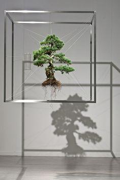 I Need this  Alter Nature: We Can - Makoto Azuma - Shiki1 (2010) /