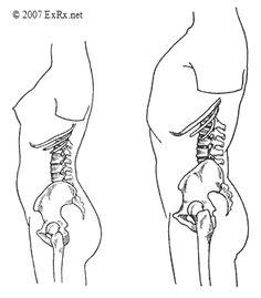 102 best Pelvis - hip bone study images on Pinterest | Anatomy ...