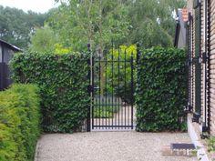 Enkele poorten - Tielemans Hekwerk en Tuinhout BV Gate Wall Design, Iron Gate Design, Dog Yard, Metal Gates, Living Fence, Aluminum Fence, Front Gates, Fence Gate, Tropical Garden
