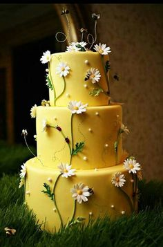 Love that is has been shot on green grass~ Bumblebees and daisies cake #daisycake