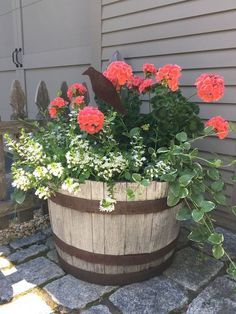 Idea Of Making Plant Pots At Home // Flower Pots From Cement Marbles // Home Decoration Ideas – Top Soop Container Flowers, Flower Planters, Container Plants, Container Gardening, Flower Pots, Wine Barrel Garden, Whiskey Barrel Planter, Barrel Garden Planters, Garden Yard Ideas