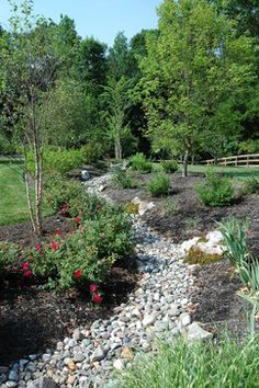 Rain Garden Design Ideas, Pictures, Remodel, and Decor - page 2