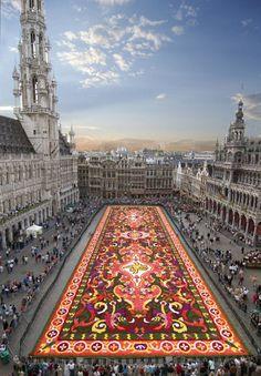 En #Bruselas se lleva a cabo cada año una alfombra hecha de 750 mil #flores en la plaza principal de aquel lugar, esto con motivo a un homenaje a los 50 años de la migración turca en #Bélgica. (FOTO: Notimex)