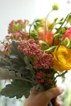 Golden pink flowers