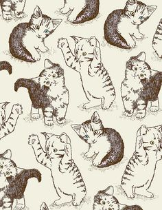 cat drawing cats patterns kitties gato Kit cata a-cuaria Cat Background, Background Patterns, Crazy Cat Lady, Crazy Cats, I Love Cats, Cool Cats, Cat Pattern, Cat Drawing, Textures Patterns