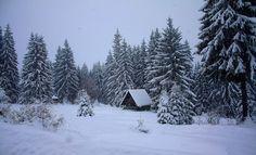 ROMANIA by Photo Mania, FB Winter Season, Romania, Wanderlust, Snow, Seasons, Country, Outdoor, Beautiful, Art