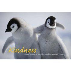 Kindness - Penguins Motivational Poster