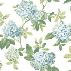 Hydrangea - AK7445 from Blooms book