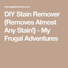 DIY Stain Remover {Removes Almost Any Stain!} - My Frugal Adventures