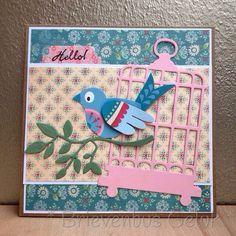 Postcard: * Escaped bird *