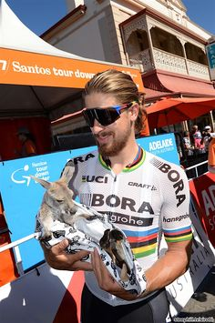 Peter Sagan Stage 1 Tour Down Under 2017 Stage, Bicycle Race, Pro Cycling, Super Bikes, Road Racing, World Championship, Tv 2017, Tours, Baseball Cards