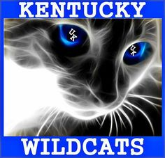 Kentucky wildcats! For my cousin Blair, I hope she sees this on my page!!