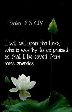 Bible Verses to Live By:Psalm (KJV) - I will call upon the LORD, who is worthy to be praised: so shall I be saved from mine enemies. Bible Verses Kjv, Biblical Quotes, Favorite Bible Verses, Bible Verses Quotes, Spiritual Quotes, Faith Quotes, Healing Scriptures Kjv, Praise God Quotes, Healing Quotes