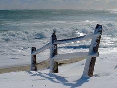 Free photo: Fence, Beach, Sea, Nature, Sand - Free Image on Pixabay - 2058541