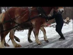 ▶ Amish man pulls van out of snow. - YouTube