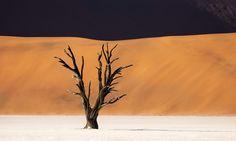 Sozinha no deserto.  Fotografia: Trey Ratcliff.