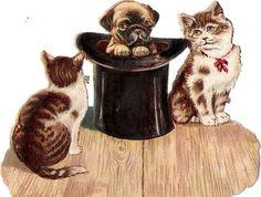 Oblaten Glanzbild scrap die cut chromo Katze cat   Hund dog Hut hat  Mops puppy