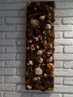 Écorce de bois caillou et coquillage