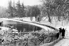Sefton Park in the snow 1959
