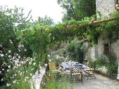 Mediterranean Edible Garden Style