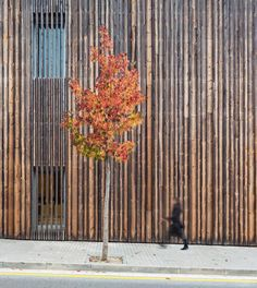Vista exterior. Detalle de la fachada. Centro social 'El Roure' y biblioteca 'La Ginesta' por Calderon-Folch-Sarsanedas Arquitectes. Fotografía © Pol Viladoms. Señala encima de la imagen para verla más grande.