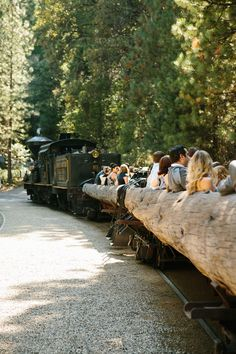 Guests rode train to wedding in forest  - Yosemite Mountain Sugar Pine Railroad- Rustic wedding- brentvanaukenphotography