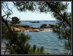 Bateas en la ria de aurousa vista desde a illa