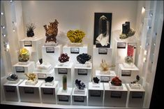 gem and mineral stands - acrylic blocks and bases Tucson Gem Show, Crystals Store, Museum Displays, Display Case, Display Ideas, Rock Collection, Jewelry Show, Rocks And Gems, Displaying Collections