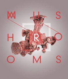 MUSHROOMS by NastPlas