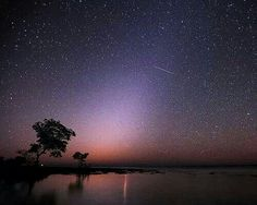 Star gaze from Big Pine Key, Florida..one of the top 7 best star gazing spots in the world!