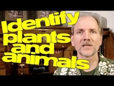 How to identify plants and animals (an introduction to species identification).