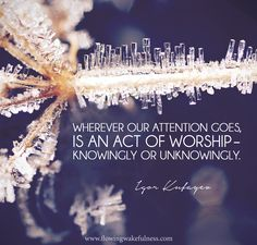 """""""Wherever our attention goes, is an act of worship – knowingly or unknowingly. Matt Kahn, Caroline Myss, In His Presence, Byron Katie, A Course In Miracles, Spiritual Teachers, Tantra, Consciousness, Awakening"""