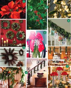 Decora con plantas tu casa para esta Navidad. Ideas faciles y diferentes