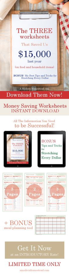 ON SALE! These worksheets saved us $15,000 last year and we didn't have to give up anything! Seriously, this is the best budgeting system I've ever seen. Easy to use worksheets for everything in your house, not just food!