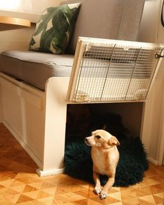 Hidden doggie crate and bed. Perfect for RV and/or Tiny Home. #doggie #crate #pet #rv
