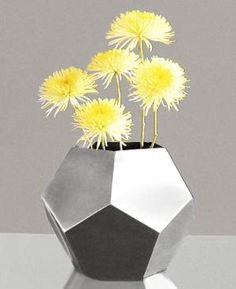 Google Image Result for http://homeinteriordesignthemes.com/wp-content/uploads/2009/05/geometric-flower-planter-in-a-polygon-vase-shape.jpg