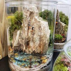 Hoje vamos de rapel?! ⛰ *Peça única, disponível no stand da @terrajardim no #pixelshow #terrajardim #terrajardimterrarios #terrario #terrarium #natureza #nature #landscape #rapel #presentecologico #presentedenatal #plants #plantas