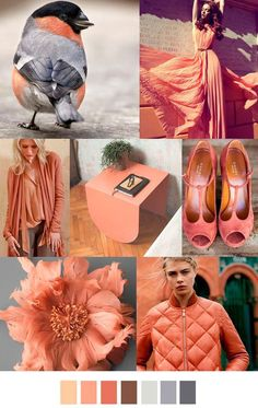 The combination of colors in clothes - Moodboard! Peach color Inspiration