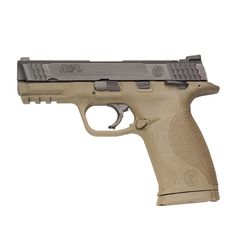 Smith and Wesson .45 my new home alarm system.... I think it will work.