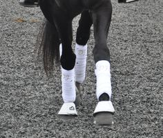 Dressage, Equestrian, Bespoke, Horses, Sneakers, How To Wear, Style, Fashion, Taylormade
