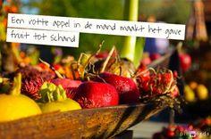 Een rotte appel in de mand maakt het gave fruit tot schand