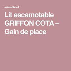 Support tv cran plat t l scopique encastrer dans meuble quincaillerie - Lit escamotable griffon ...