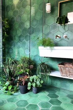 Downstairs Bathroom, Small Bathroom, Tropical Bathroom, Bathroom Ideas, Green Tile Bathrooms, Green Bathroom Decor, Bathroom Layout, Bathroom Cabinets, White Bathroom