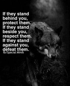 Never stand I front of a hungry Wolf I will eat you alive...Q