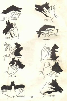 shadow puppet know-how