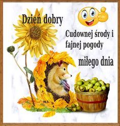 Good Morning, Hedgehogs, Blog, Good Morning Funny, Polish, Quotes, Pictures, Buen Dia, Bonjour