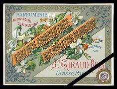 Vintage-French-Perfume-Label-Original-Antique-Art-Nouveau-Violettes-Giraud-Fils