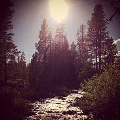 Sierra Hot Springs Retreat!