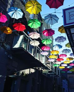 Umbrella Street In D